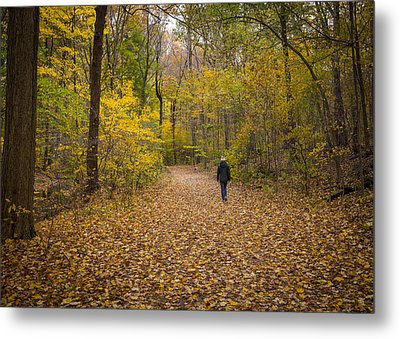 Hiker IIi  Metal Print by Tim Fitzwater