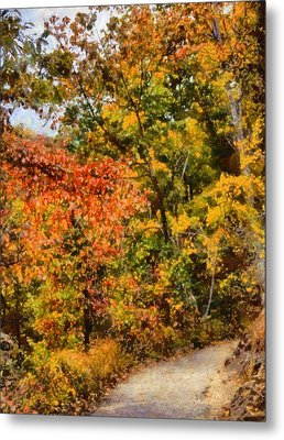 Hiking In Autumn Metal Print by Dan Sproul