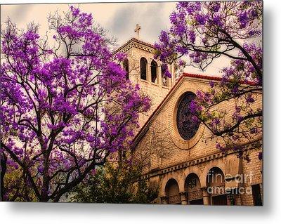 Historic Sierra Madre Congregational Church Among The Purple Jacaranda Trees  Metal Print by Jerry Cowart