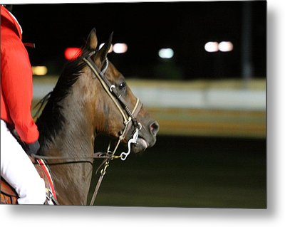 Hollywood Casino At Charles Town Races - 121256 Metal Print by DC Photographer