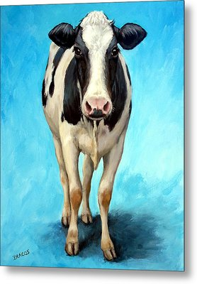 Holstein Cow Standing On Turquoise Metal Print by Dottie Dracos