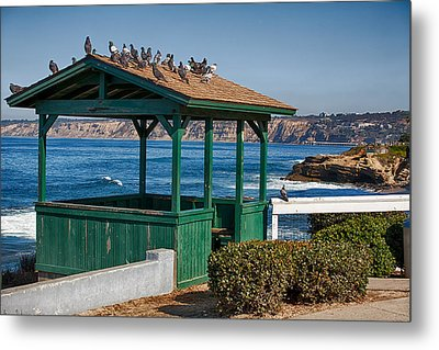 Home By The Sea Metal Print by Peter Tellone