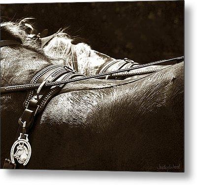 Horse Brass Metal Print by Judy Wood