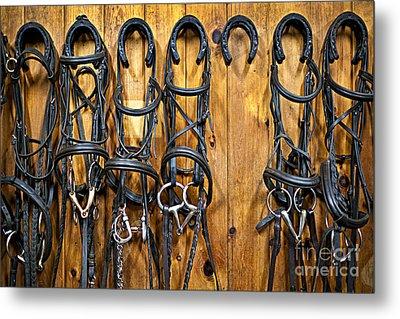 Horse Bridles Hanging In Stable Metal Print by Elena Elisseeva