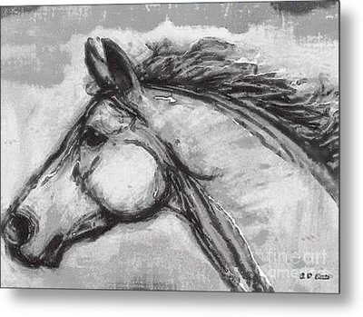 Horse Head Study Metal Print by Elizabeth Coats
