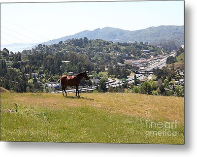 Horse Hill Mill Valley California 5d22662 Metal Print by Wingsdomain Art and Photography
