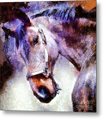 Horse I Will Follow You Metal Print by Janine Riley