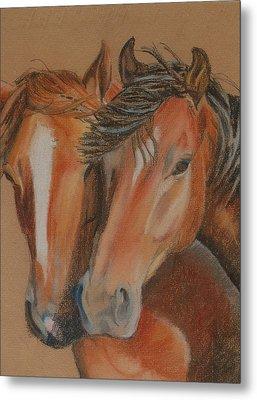 Horses Looking At You Metal Print by Teresa Smith
