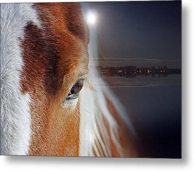 Horses  Metal Print by Mark Ashkenazi