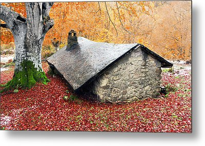 House In The Forest In Autumn Metal Print by Mikel Martinez de Osaba