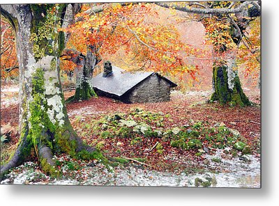 House In The Forest Metal Print by Mikel Martinez de Osaba