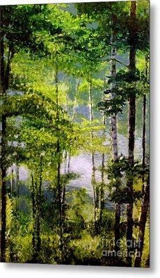 Wisconsin Birch Trees On Lake  Metal Print by Lisa Alex Gray