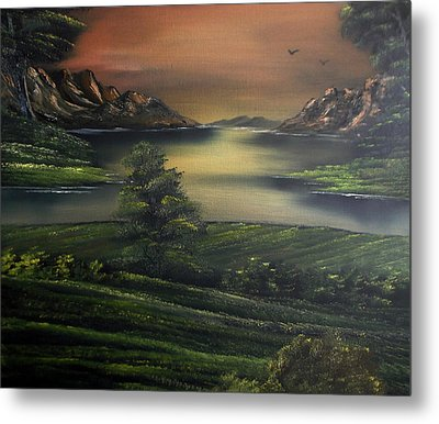How Green Is My Valley Metal Print by Cynthia Adams
