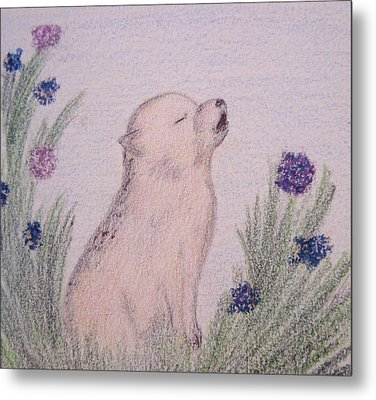 Howling Wolf Pup Metal Print by Christine Corretti