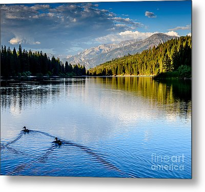 Hume Lake Evening Metal Print by Terry Garvin