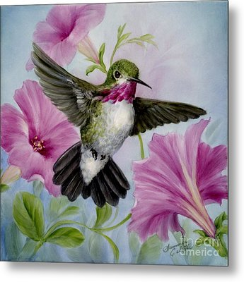 Hummer In Petunias Metal Print by Summer Celeste