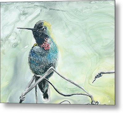 Humming Bird Metal Print by Donna Turbyfill