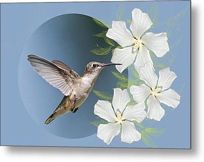 Hummingbird Heaven Metal Print by Bonnie Barry