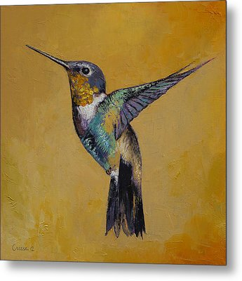Hummingbird Metal Print by Michael Creese