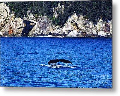 Humpback Whale Alaska Metal Print by Thomas R Fletcher