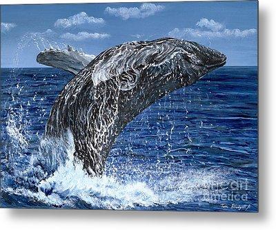 Humpback Whale Metal Print by Tom Blodgett Jr