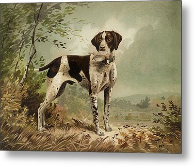 Hunting Dog Circa 1879 Metal Print by Aged Pixel