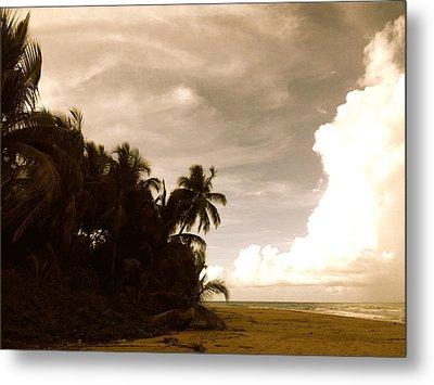 Hurricane Sandy Metal Print by Danielle  Broussard