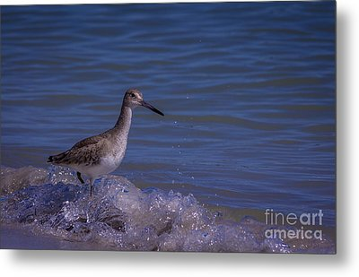 I Can Make It Metal Print by Marvin Spates