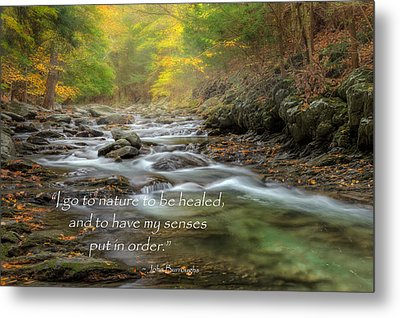I Go To Nature Metal Print by Bill Wakeley