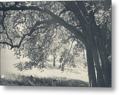 I Would Wrap My Arms Around You Metal Print by Laurie Search