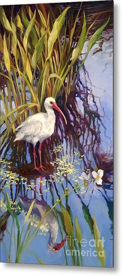 Ibis  Metal Print by Laurie Hein