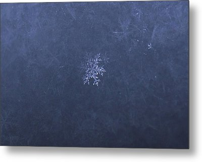 Ice Jewellery Metal Print by Aivis Ilsters