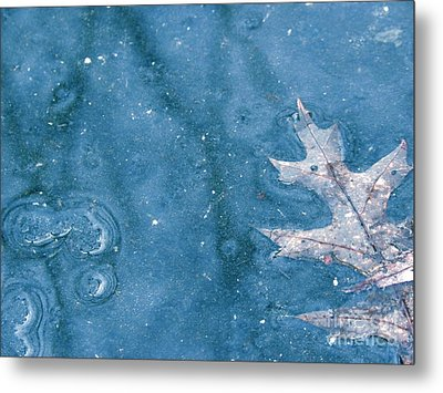Ice Reflections 2 Metal Print by Laura Yamada