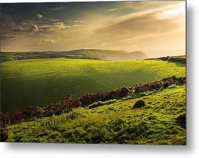 Illuminated Evening Landscape North Devon Metal Print by Dorit Fuhg
