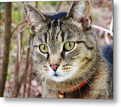I'm Beautiful Metal Print by Judy Via-Wolff
