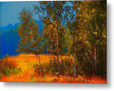 Impressionistic Autumn Metal Print by Jenny Rainbow