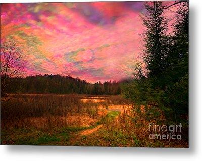 Impressionistic Morning View Of West Virginia Botanic Garden Metal Print by Dan Friend