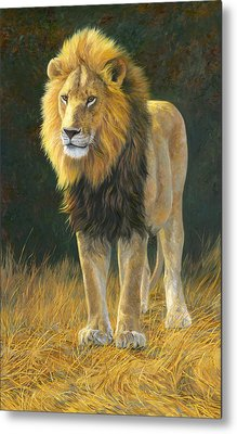 In His Prime Metal Print by Lucie Bilodeau