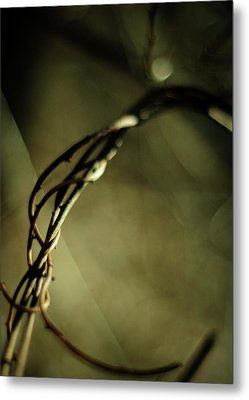 In Shadows And Light Metal Print by Rebecca Sherman