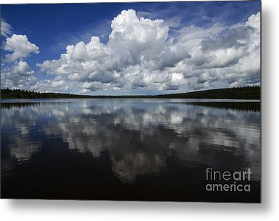 In The Good Old Summertime  Metal Print by Bob Christopher