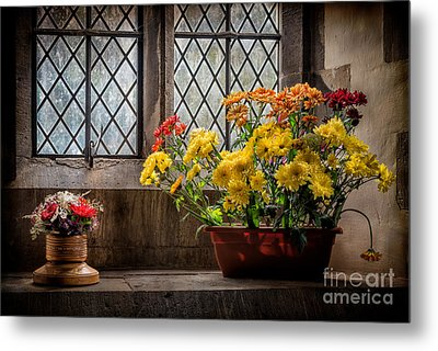 In The Light Metal Print by Adrian Evans