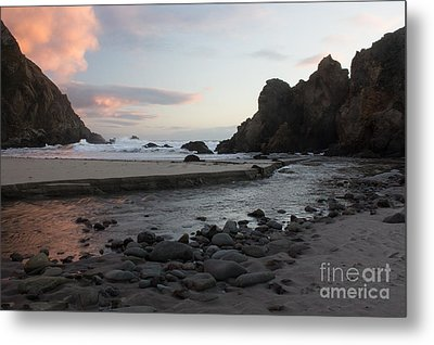 In The Pink Metal Print by Suzanne Luft