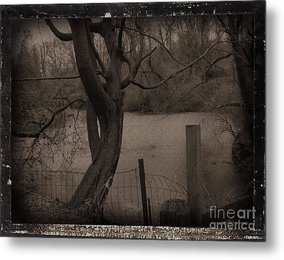 In The Times Of The Hanging Trees Metal Print by Roxy Riou