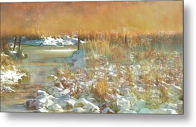 In The Twilight Metal Print by Shirley Sirois