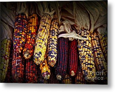 Indian Corn Metal Print by Elena Elisseeva