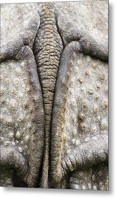 Indian Rhinoceros Tail Metal Print by Konrad Wothe