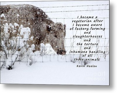 Inhumane Torture Of Animals Metal Print by Janice Rae Pariza