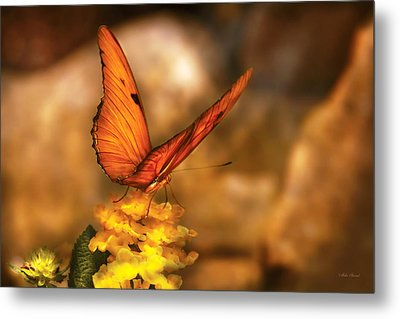Insect - Butterfly - Just A Bit Of Orange  Metal Print by Mike Savad