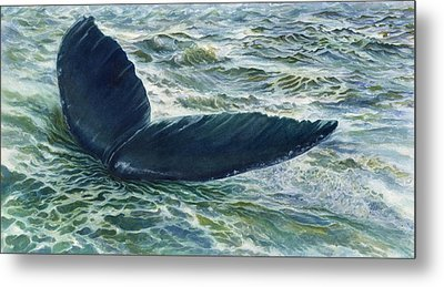 Into The Deep Metal Print by Connie Ely McClure