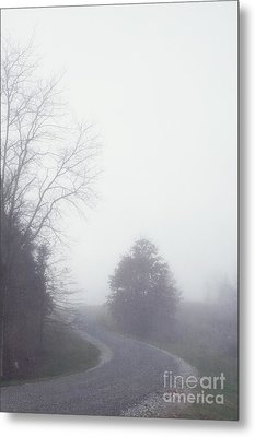 Into The Fog Metal Print by Kay Pickens